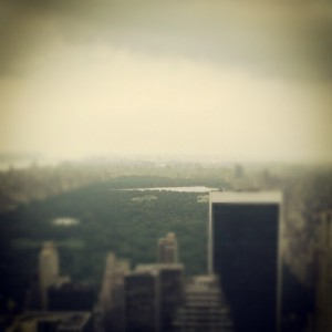 nyc3 300x300 nyc photography with instagram