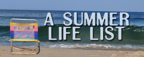 Header Summer Life List a summer life list