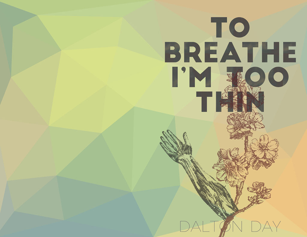 From Hyacinth Girl Press: To Breathe I'm Too Thin by Dalton Day (exclusive), cover design by Sarah Reck